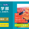 近畿大学の評判・口コミ【国際学部編】
